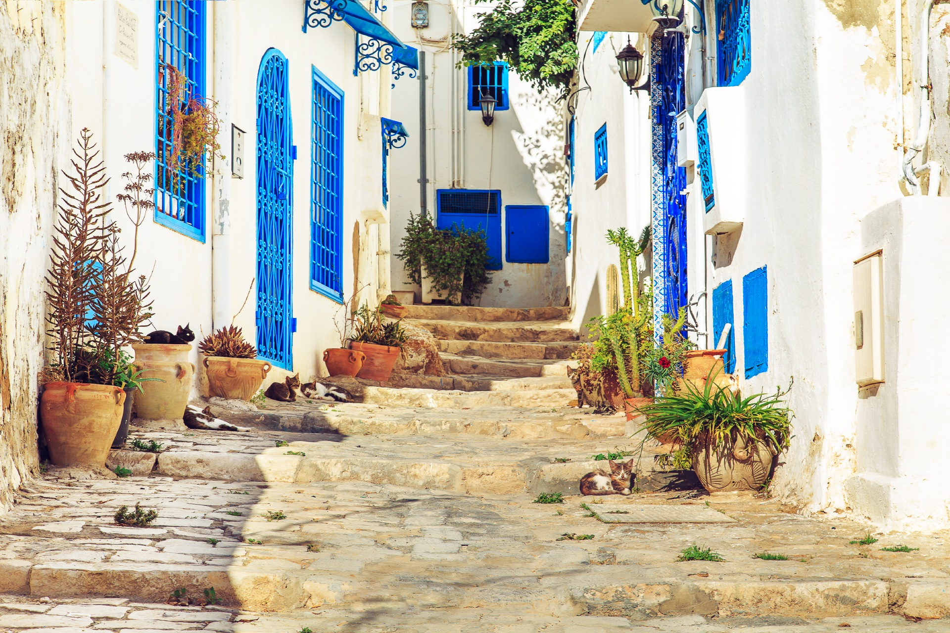 チュニジア シディ・ブ・サイドの路地