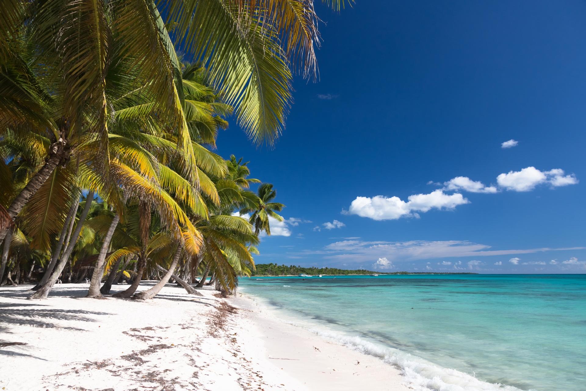 美しいカリブ海のビーチ ドミニカ共和国サオナ島