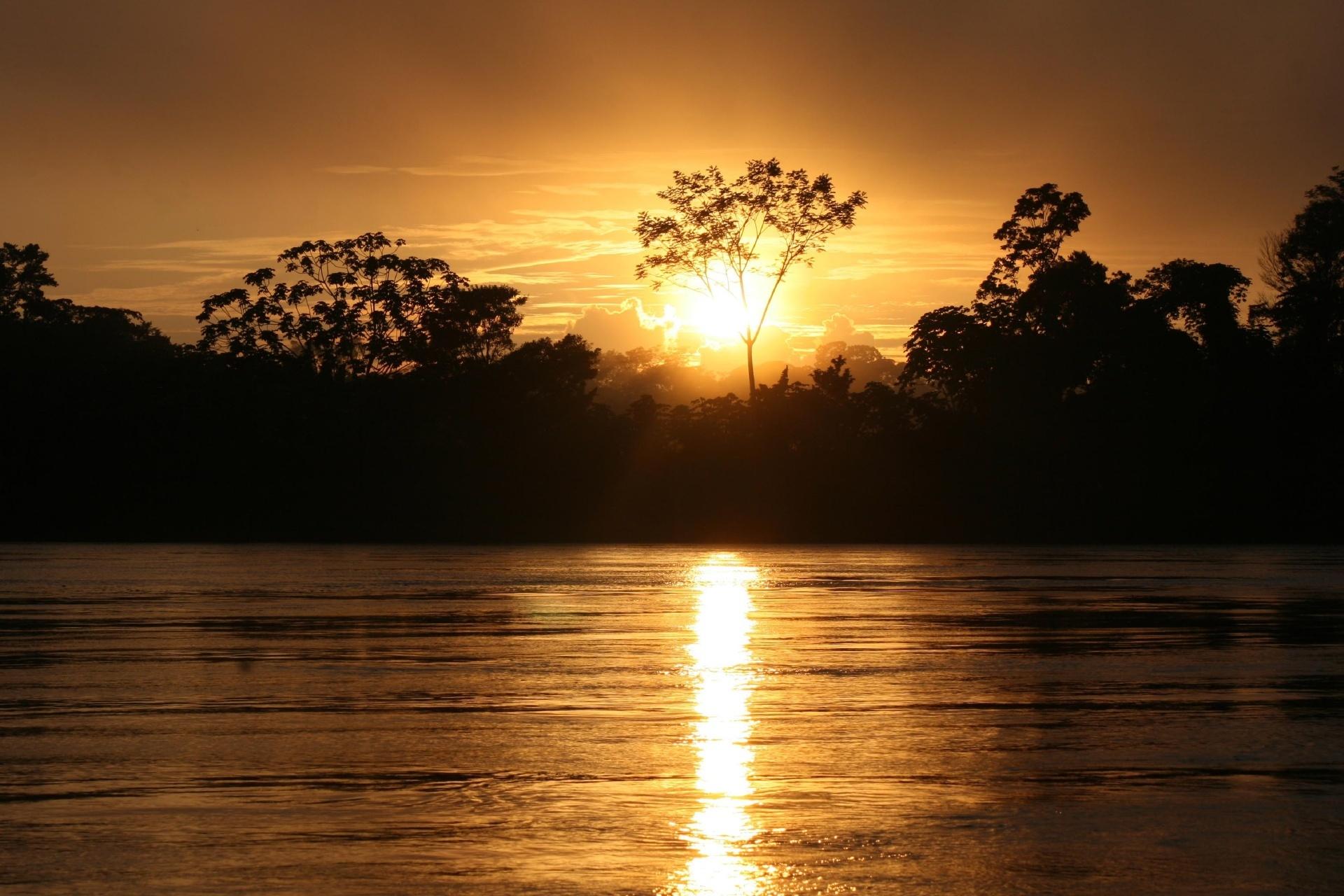 アマゾンの熱帯雨林に昇る朝日 ペルー