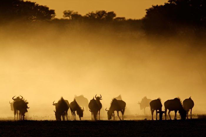 アフリカの絶景 アフリカの美しい風景